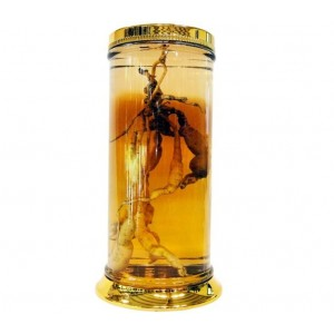 Bình Ngâm Rượu Hàn Quốc N1 - 73 lít