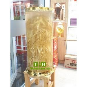 Bình Rượu Sâm Vip 73 Lít