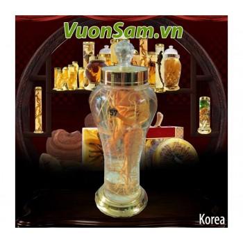 Nhân Sâm Tươi Hàn Quốc Ngâm Rượu Loại 3 Lít