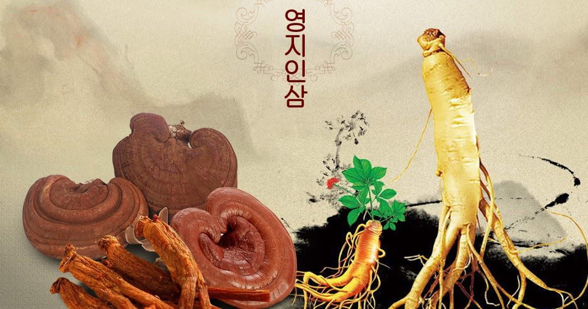 Cao Hồng Sâm Linh Chi 240g x 2