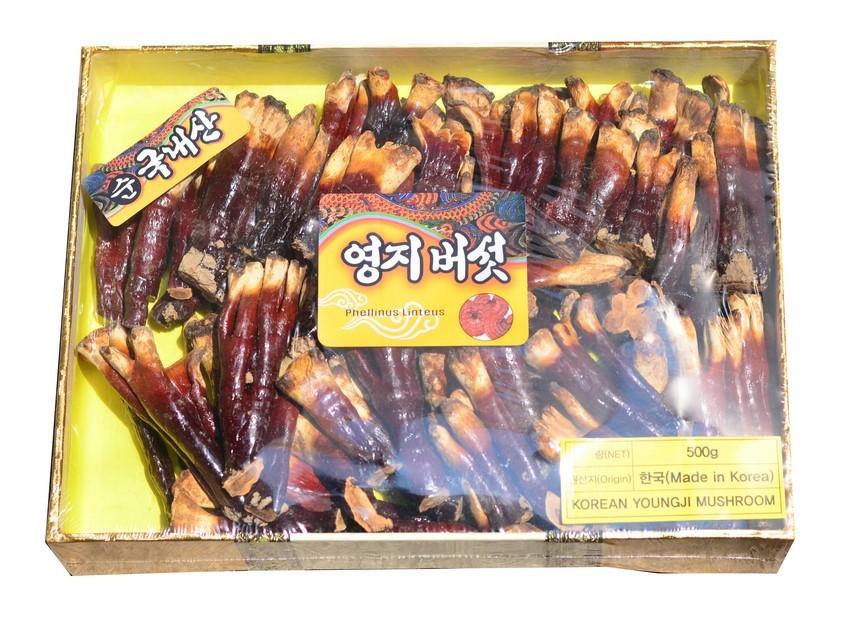 Nấm Linh Chi Sừng Hươu Hàn Quốc Cao Cấp Từ Thiên Nhiên